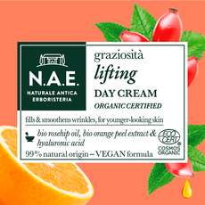 N.A.E. Graziosita Lifting Daycream